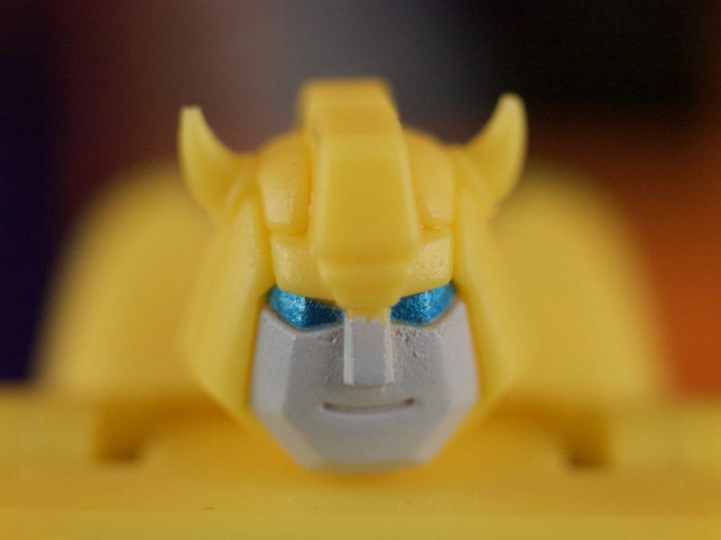 Flipper face