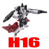 H16 (jumps to details)