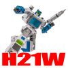 H21W Karate Kid (jumps to details)